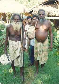 Wanniyal-aetto elders Taepal Bandiya and Suddu Bandiya